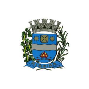 Pref. Municipal De RIBEIRA: Carros, Caminhões e diversos.