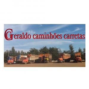 SCANIA -  FORD -  GRANELEIROS